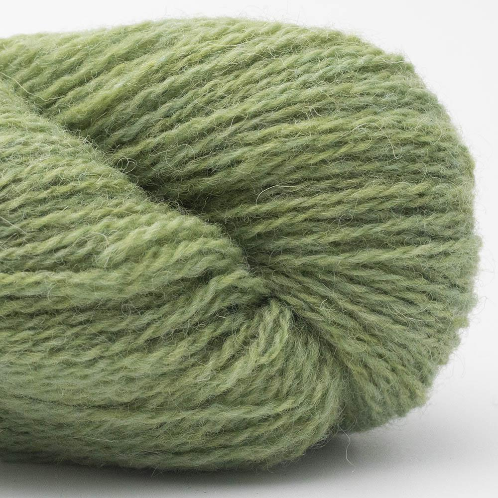 BC Garn Bio Shetland GOTS zertifiziert Lindgrün