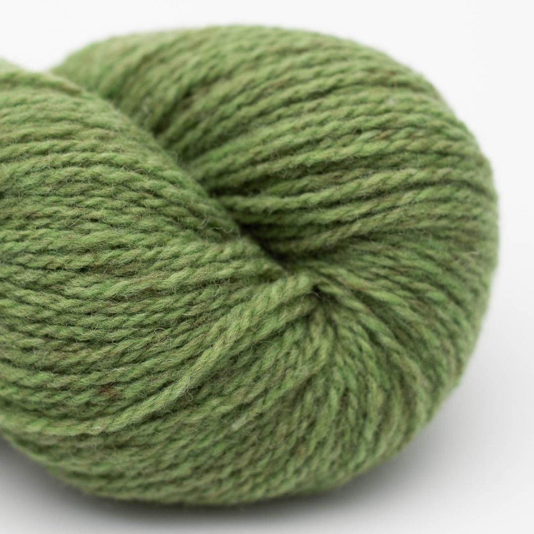 BC Garn Semilla Melange apple green